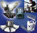 Pest/Bird Control Winner Bird-X, Inc.
