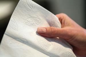 SCA Tissue